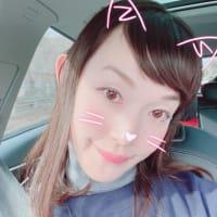 変身遊び💫 猫類🐈