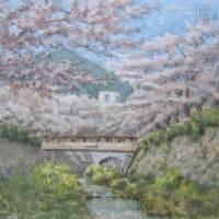 想い出めくり№10「一ノ坂川に桜咲く」(山口市)