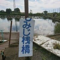 加須吉沼に行ってきた。撃沈まっしぐら