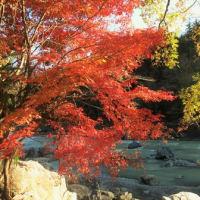 御岳渓谷紅葉散策