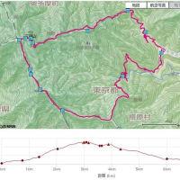 三頭山、1,531m