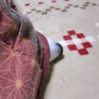 簡単レシピ~赤エビのタルタルグリル