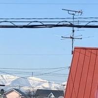 陽射し燦々と輝いているけれど〜(;_;)