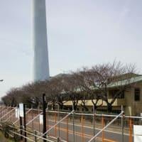 環境費の予算審査 焼却工場建て替え、熱利用