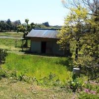 Newプロジェクト!価値ある不動産を再生する+α!!『 岬町椎木 MさんのEnjoy farm house 』⌂Made in 外房の家。は12月上旬~着工予定!!です。