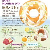 母の日ギフト 潮風の甘夏ケーキ