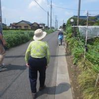 【羽生】お散歩してみました!