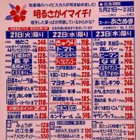ハイビスカス★今週の特売チラシ