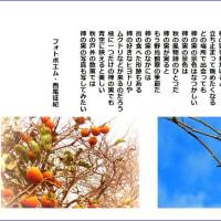 柿の実の景色