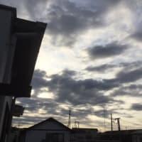 今日はお休みです<(_ _)>