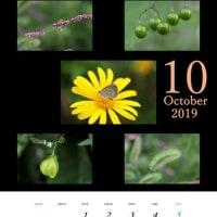 10月のMyカレンダー
