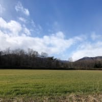 あったかい高原の冬