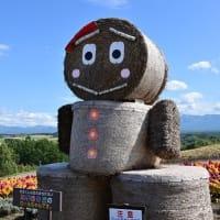 北海道の旅14・・・【いな】