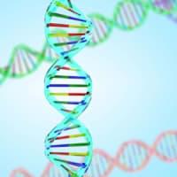 松本市 医療用ウィッグ 癌ゲノム医療 連携病院