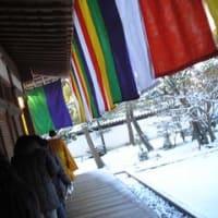 冬の京都②-宿坊体験in知積院