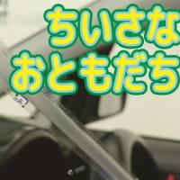 ラディアルレイズ ネイチャーラディ 動画更新である!!