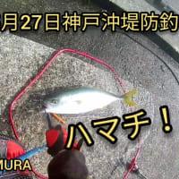 2020年5月27日 神戸沖堤防で魚釣り。ハマチ釣れてます!