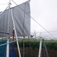 農薬飛散防止「防薬フェンス」