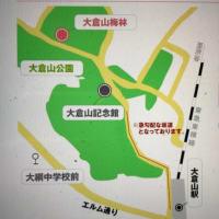 2/22、23  大倉山観梅会 2020