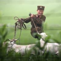 北朝鮮の何パーセントの人民がヌクヌクできるの?::のんびりゆったり、北朝鮮の温泉レジャー施設。人民の明暗。