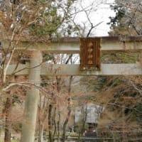 2020年3月関西旅行:彦根城、玄宮園