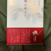 椿は咲きて 筒井早苗 青磁社