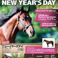 【ニューイヤーズデイ(New Year's Day)】が「社台スタリオンステーション」に到着!