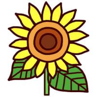 「夏の花・植物2」(花・植物/ミニカット)