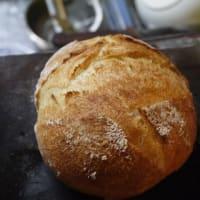 コーンミール入りパンとマフィン