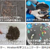 海岸でマイクロプラスチックを探そう!身近な環境調査の方法