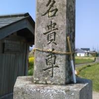 市田山地蔵の隣の地神さんを訪ねる(香川の神社187)