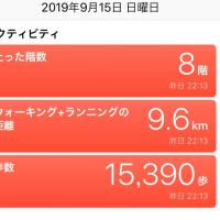 奈良観光 興福寺〜春鹿酒蔵まつり