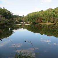 [平塚ビーチ]と[町田薬師池公園]と「近況」