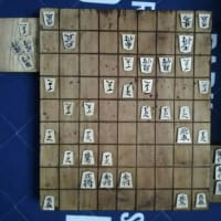第33期「竜王戦」7番勝負の第2局・終局