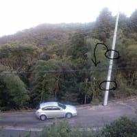 ⑧東電PGが目の前に余計な電柱を新設!怒り心頭に発す!⑧