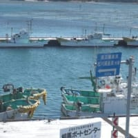 もう一度、松川浦を戻したい…