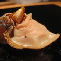 4月8日は「貝の日」です~
