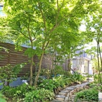 令和2年地域型住宅グリーン化事業採択されました
