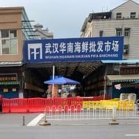 中国  新型ウイルス肺炎 「国外へは出るが省外へは出ない。愛国ウイルス」との皮肉も 実態は?