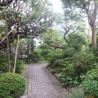 以前から気になっていた北鎌倉の光照寺にお参り