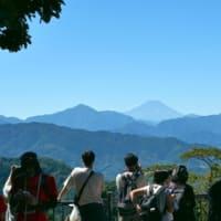 ある目的で高尾山に行く
