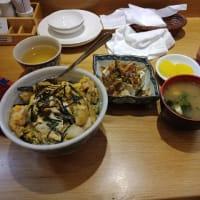 その2 夕方の散策 やっぱし美味しい朝日寿司で夕食