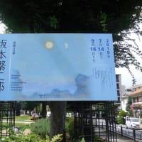 練馬区立美術館で、 『没後50年 坂本繁二郎展』 を観ました。
