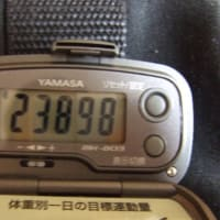 2020/02/09>トレッキング6回目 石津・恋姫山・鎌知土 2