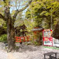 愛宕神社と出世階段