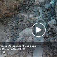 古代儀式の供物か?マヨルカ島で3200年前の青銅器時代の剣が偶然発見される(スペイン)