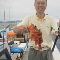 7/20(土):マイカ数釣りは出来なかったですが型はパラソル級から一升瓶サイズビール瓶大サイズまでヽ(*^^*)ノ