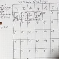 30日間チャレンジを再び始めてみた