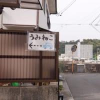 吉浦のうみねこベーカリーへ行ってきました。