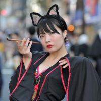 化け猫フェスティバル(Cat Parade, 2019.10.13, kagurazaka Tokyo)